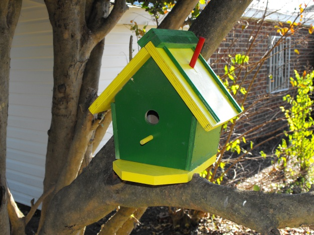 My Husband's Newest Bird House