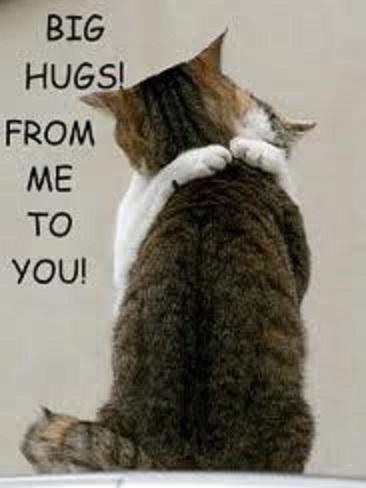 HugsfromMetoYou