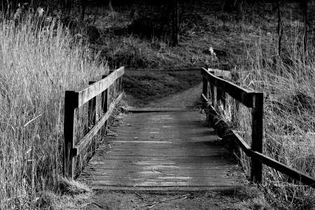 the_old_bridge_by_ck_the_photographers-d3cv9mt