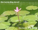lovely-blog-award2