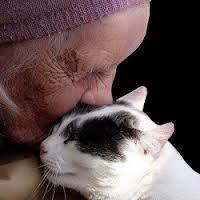 OldWoman&Cat