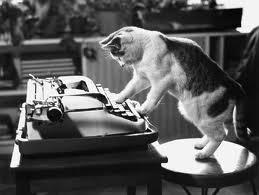Typewriter-Cat