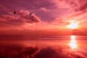 Serenity_Sunset