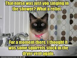 Singing_in_the_Shower