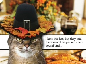 Thanksgiving-Humor-Cat-Hat