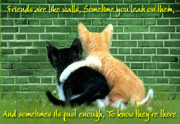 Quotes About Cats And Friendship Brothers & Sist...